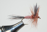 Murrays Brown Drake Dry Fly Fishing - Murray's Fly Shop