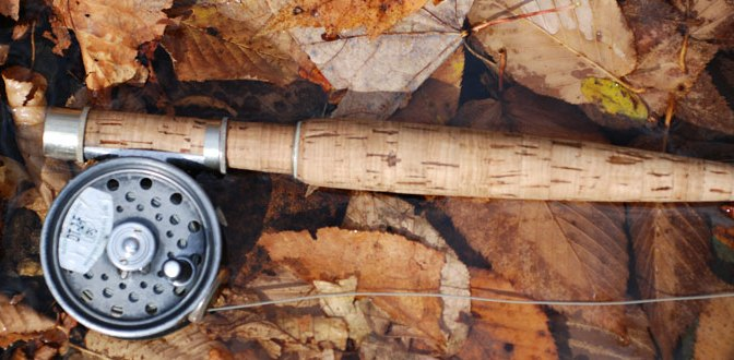 Fly Rod and Reel Resting Against a Tree