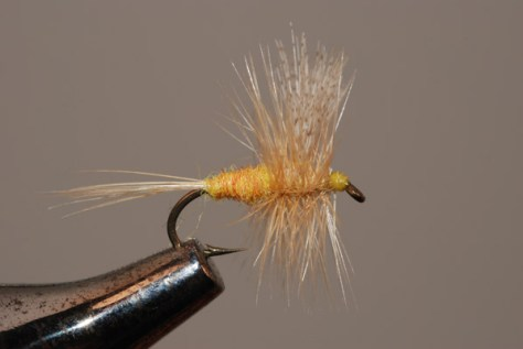 Murray's Sulphur Dry
