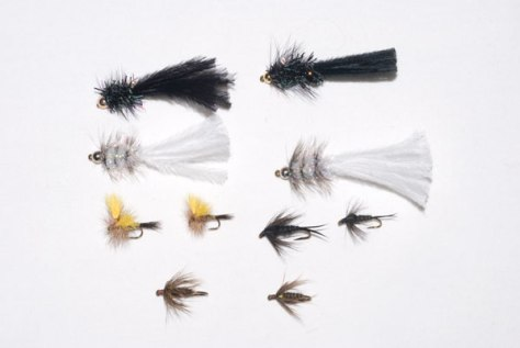 Five Best Winter Trout Flies for Large Streams