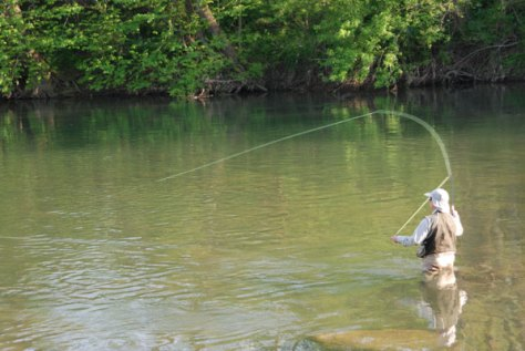 Streamer Fly Fishing Blog- Murray's Fly Shop- Edinburg, Virginia