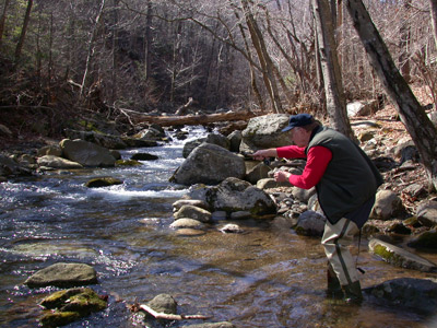 Trout Fly Fishing Murray's Fly Shop VA