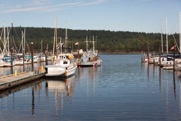 mv Archimedes at the Ladysmitih Maritime Society Guest Dock