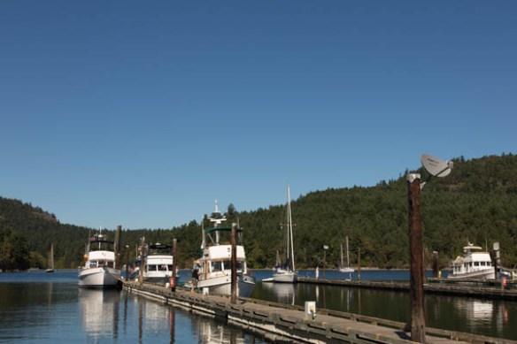 mv Archimedes on C Dock at Genoa Bay