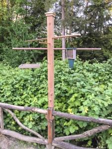 mv Archimedes backyard bird feeder 2