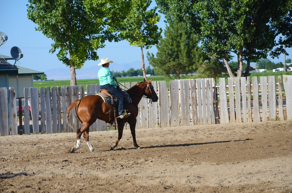 riding in the small arena