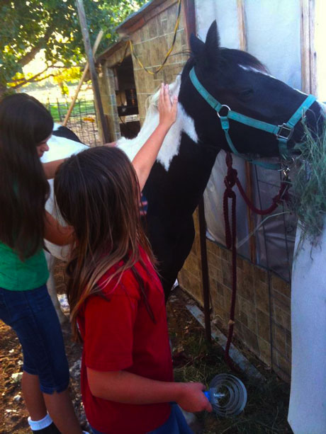 Two girls and their horse