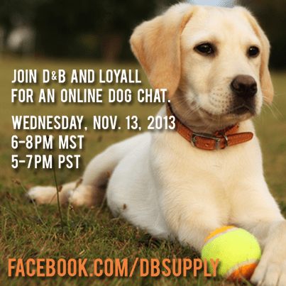 Dog Chat on D&B Facebook Page