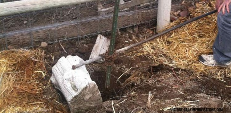 Fence Post Removal with Leverage