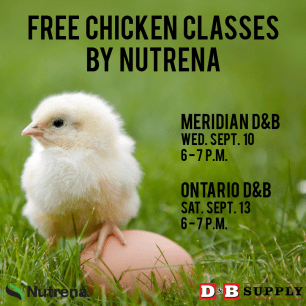 2014-Fall-Nutrena-Free-Chicken-Classes