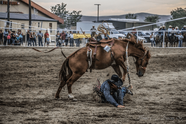 08262016_Boise-Gem-Co-Rodeo-bronc-rider-2