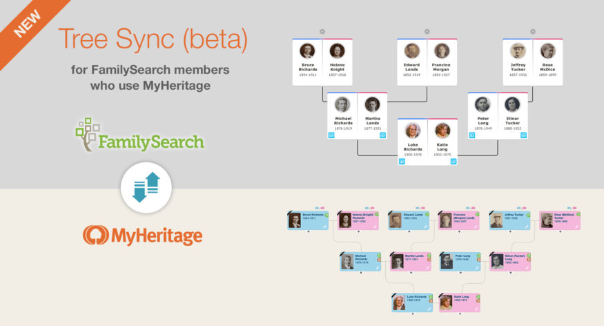 new familysearch tree sync