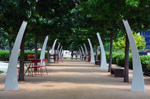 Beautiful green shaded park walking path