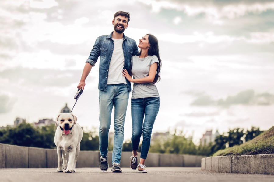 Woman and man fitness walking with dog