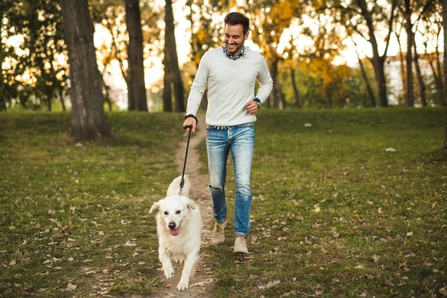 Man taking a walk in the park with dog