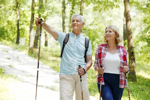Senior couple nordic walking in a park