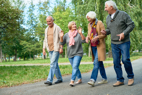 Group of seniors walking in a park