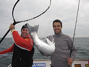 Fourth 4,1kg sea bass caught by Thibault, Area Sales Manager