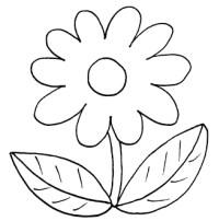 Malvorlagen Blumen Für Senioren Malvorlagen Blumen Fr Erwachsene