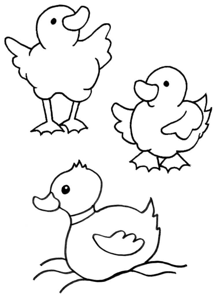 Tiere Malvorlagen