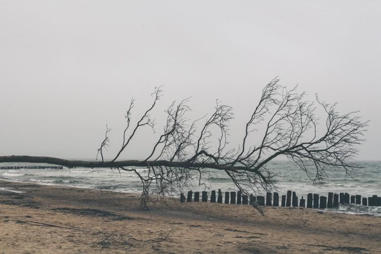 Torfbrücke Strand