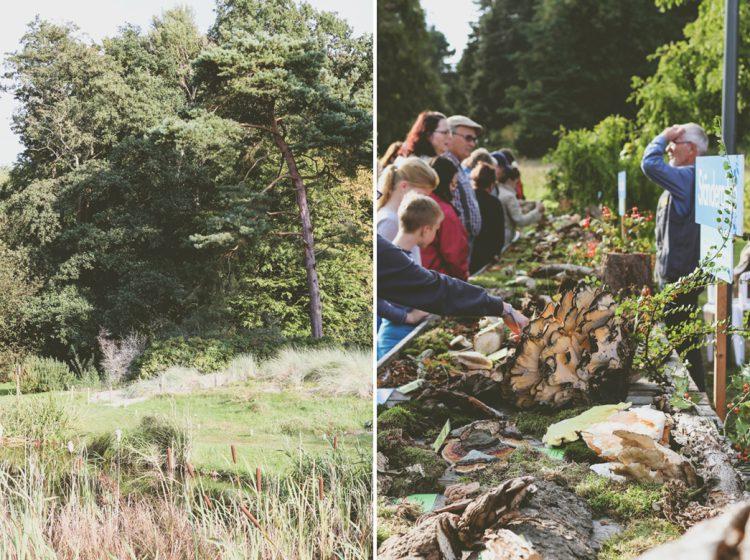 Botanischer Garten Pilzausstellung