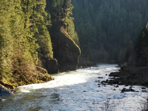 The gorgeous Umpqua River winds through the collision point of three different mountain ranges