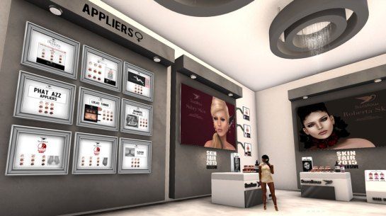 Skin Fair 2015 - Appliers