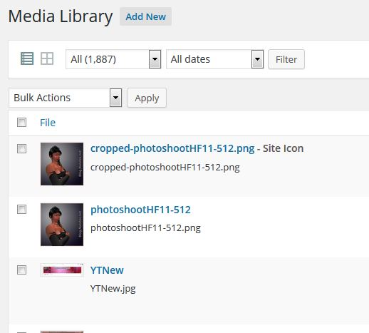 Site Icon in Media Library