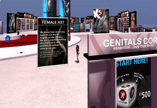 Female Genitalia X5 Release?
