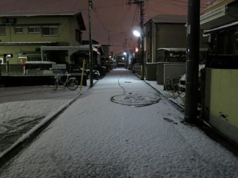 Photo named butuyoku 20130507