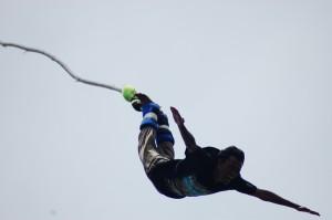 bungy-jump4