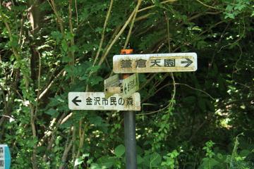 Kanazawa_cw_06