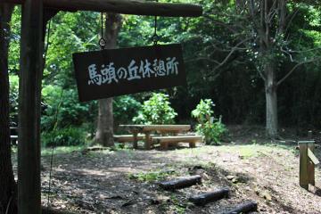 Segami_cw_62