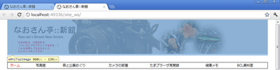 Shinkan_chrome_01