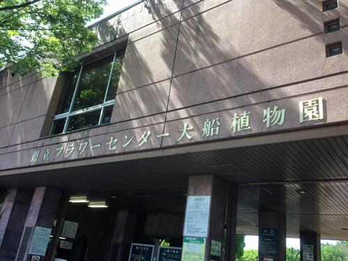 Iifuna_botanical_01