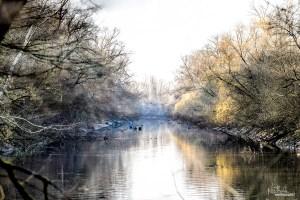 A Sunny Sunday Morning Stroll | Waldpark, Mannheim, Germany December 2015