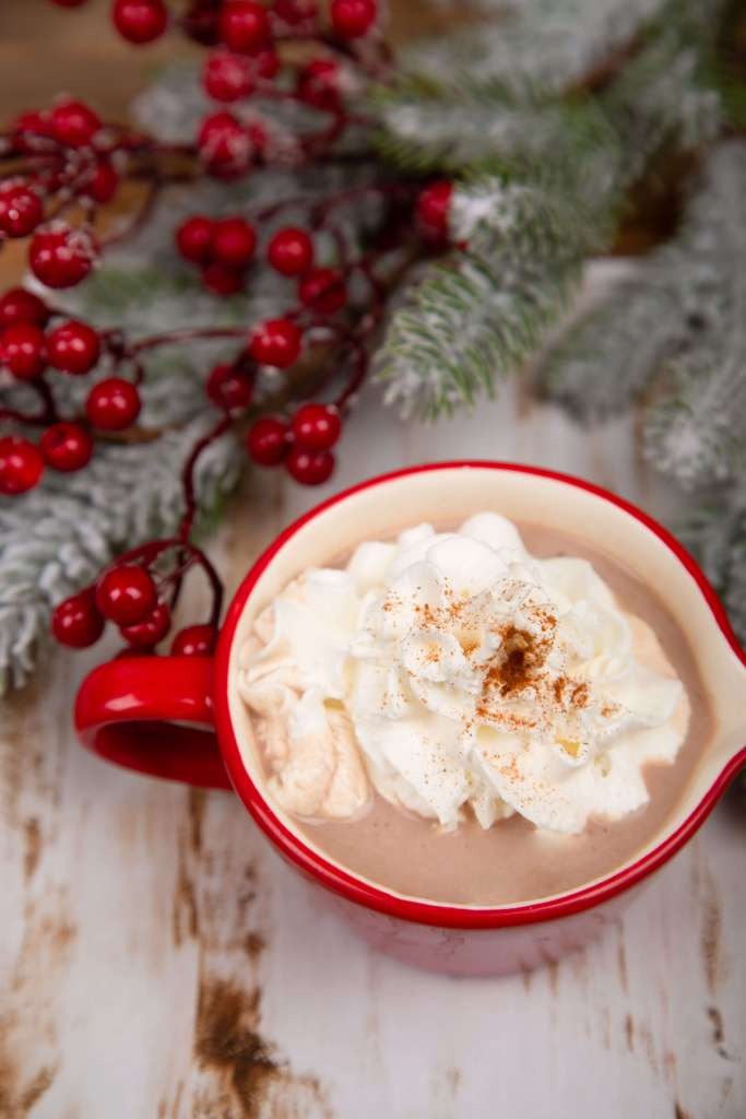 Vegan Gingerbread Hot Cocoa