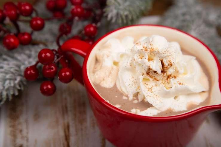 Vegan Gingerbread Hot Cocoa