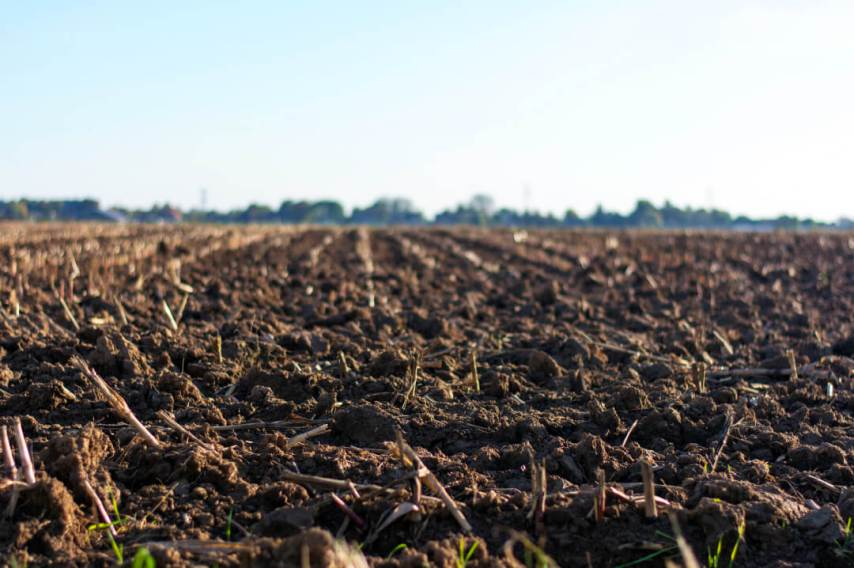 agriculture, farm, regenerative
