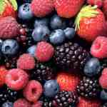 Kleinfruit in de Eigen Tuin Heeft Veel Voordelen