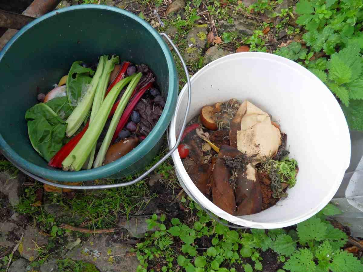 Zorg voor de Juiste Verhoudingen in uw Composthoop