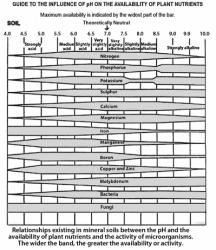 pH en opneembaarheid van voedingsstoffen