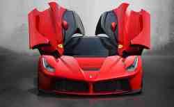 Een Rode Ferrari, een Bord en een Doodgereden Dier.
