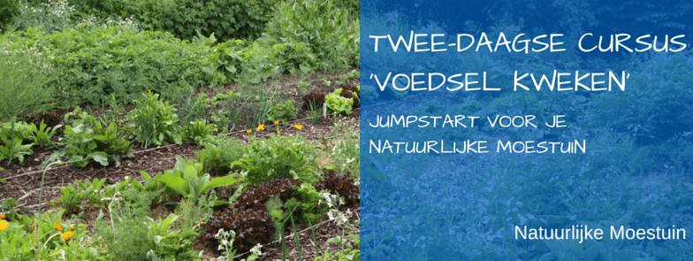 Aankondiging: Tweedaagse cursus 'Groenten Kweken'