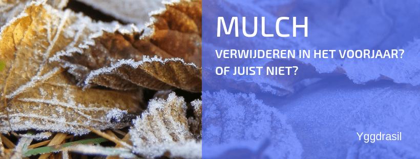 Wat Doe je Met Mulch in Het Voorjaar?