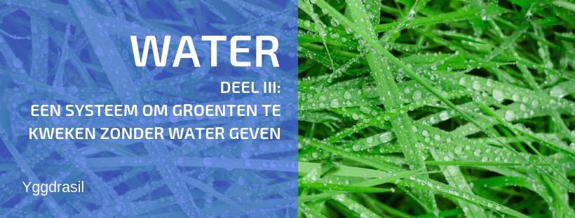 Waarom Kan je Best Geen Water Geven in je Tuin?
