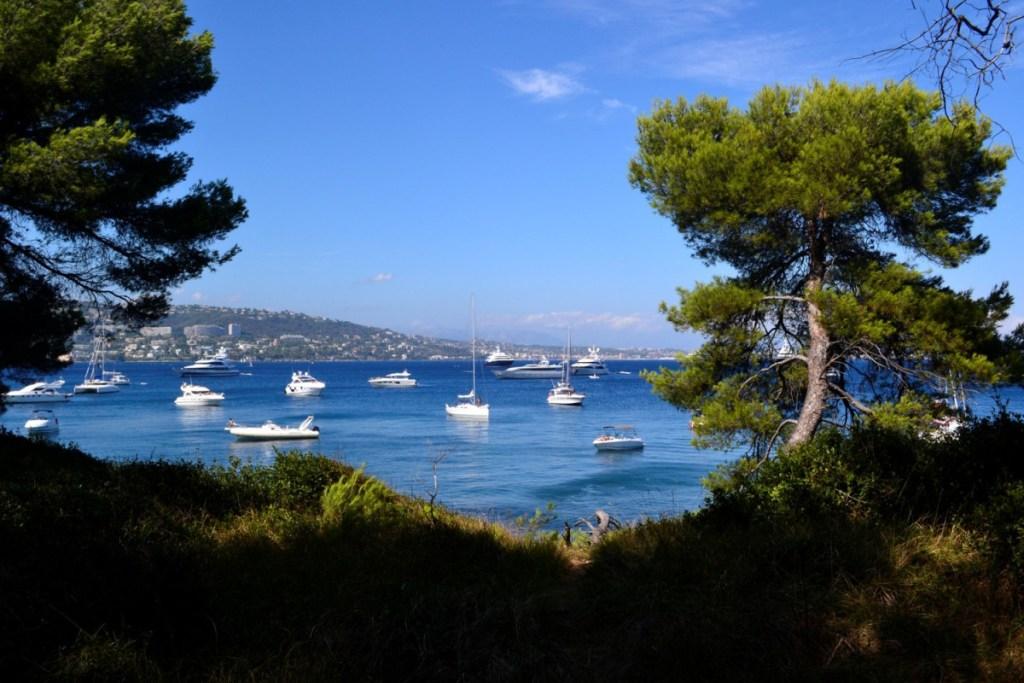 Mouillages autour des îles de Lerins sur Navily en Côte d'Azur