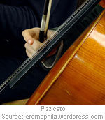 pizzicato-1