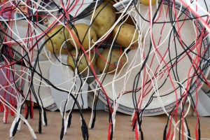 CHARGE by Amber Ginsburg Cyanotype, Shards from two columns of dishes, wire, 400 potatoes, 100 diodes Image: Allison King
